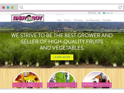 Andy Boy Website